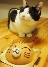 l-Happy-Birthday-Kitty cutestpawcom