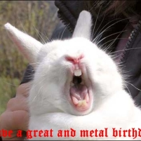 wpid-birthday-bunny.jpg.jpeg