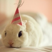 wpid-birthday-buns18.jpg